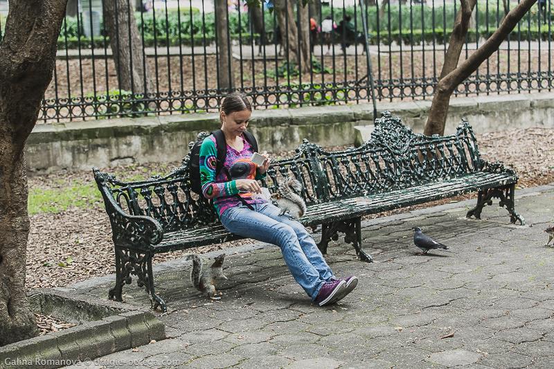 Парк Чапультепек в Мехико; Bosque de Chapultepec México