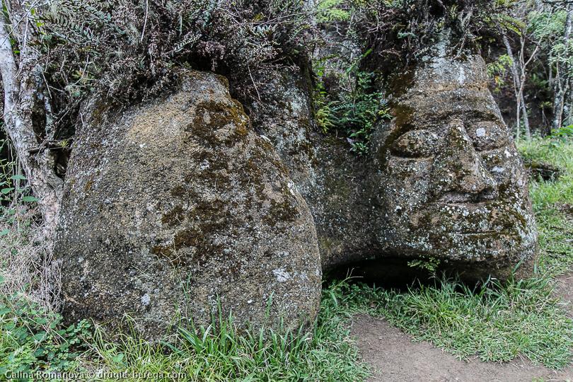 Каменная голова на острове Флореана Галапагосские острова; Galapagos, Floreana island