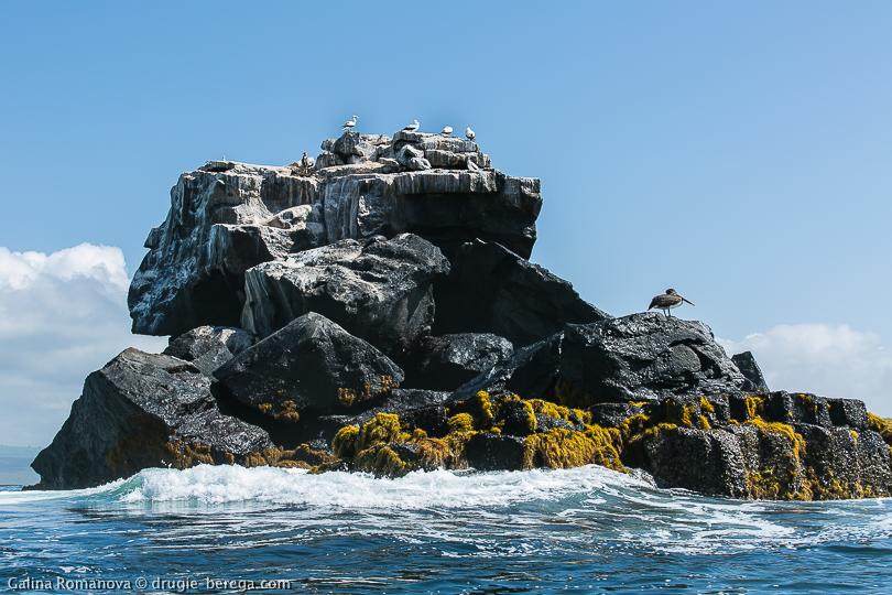 Одинокая скала в океане