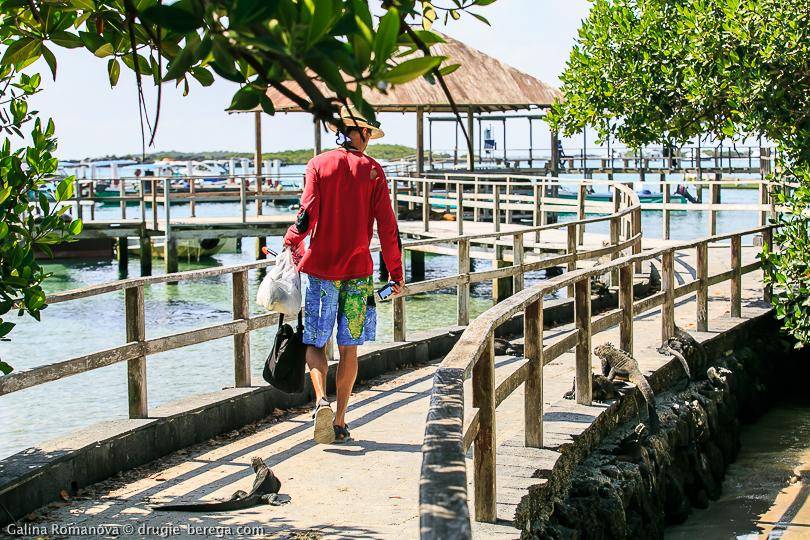 Галапагосы, остров Изабела; Galapagos islands Isabela