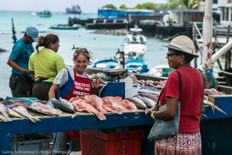 Рыбный рынок в Пуэрто-Айора, Галапагосские острова
