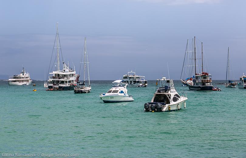 Галапагосские острова, остров Санта-Круз, Galapagos islands Santa Cruz