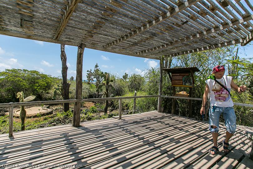Станция Чарльза Дарвина на Галапагосах