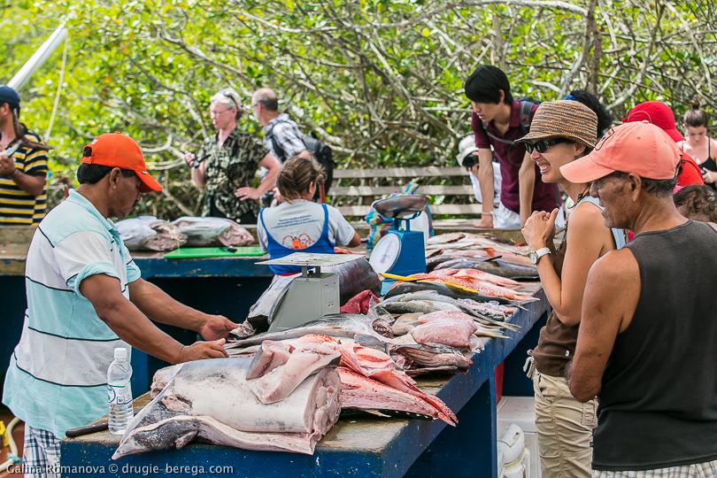 Галапагосские острова, рыбный рынок в Пуэрто-Айора
