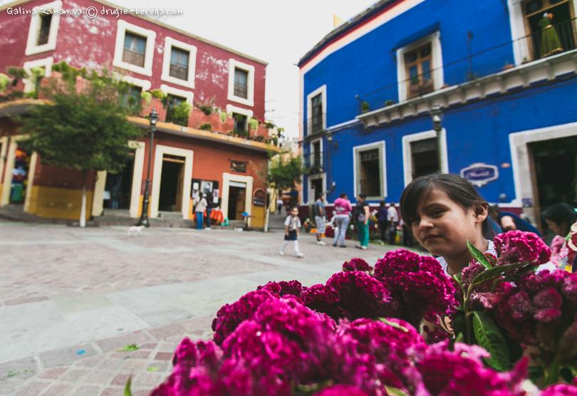 Девочка-продавец цветов в Гуанахуато