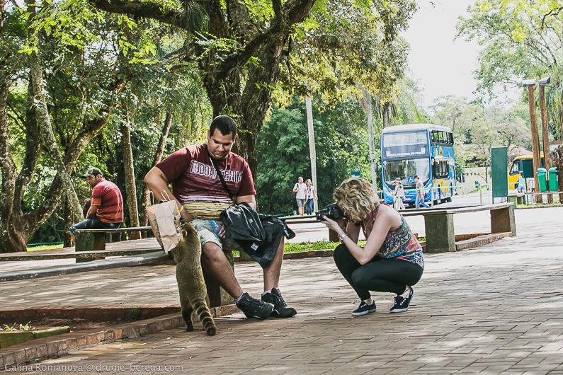 Национальный парк Игуасу, Бразилия; Iguazu National Park, Brazil