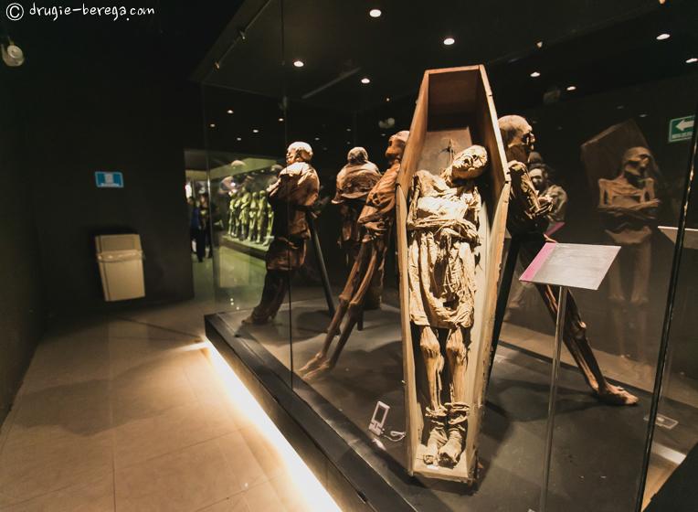 http://drugie-berega.com/wp-content/uploads/Museum-of-mummy-15.jpg