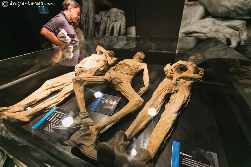 Музей Мумий в Гуанахуато; Museum of Mummies in Guanajuato