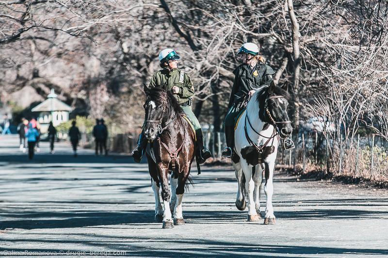Центральный парк, Нью-Йорк; Central Park New York