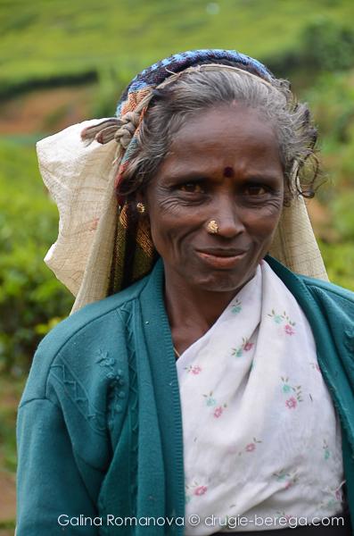 Собирательница чайных листьев, Нувара Элия, Шри-Ланка, Nuvara Elia, Sri-Lanka