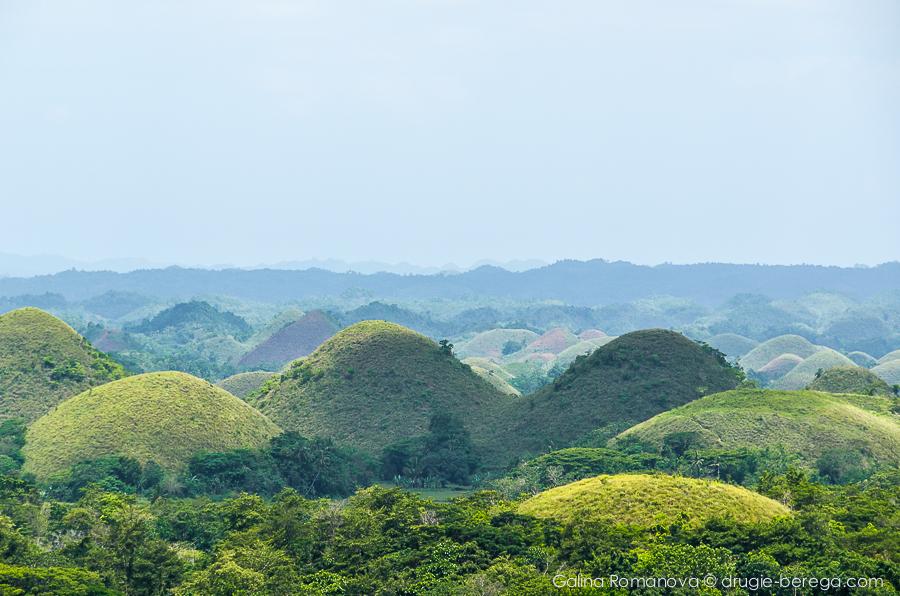 Филиппины, Бохоль, Шоколадные холмы (Philippines, Bohol, Chocolate Hills)