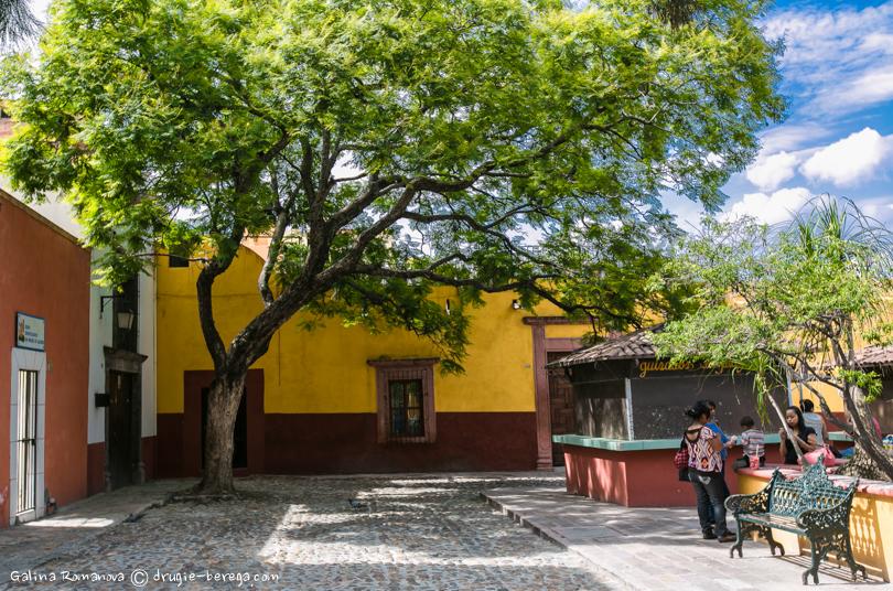 Сан-Мигель-де-Альенде; San Miguel de Allende